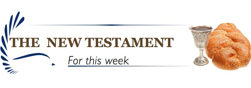 New Testament Banner